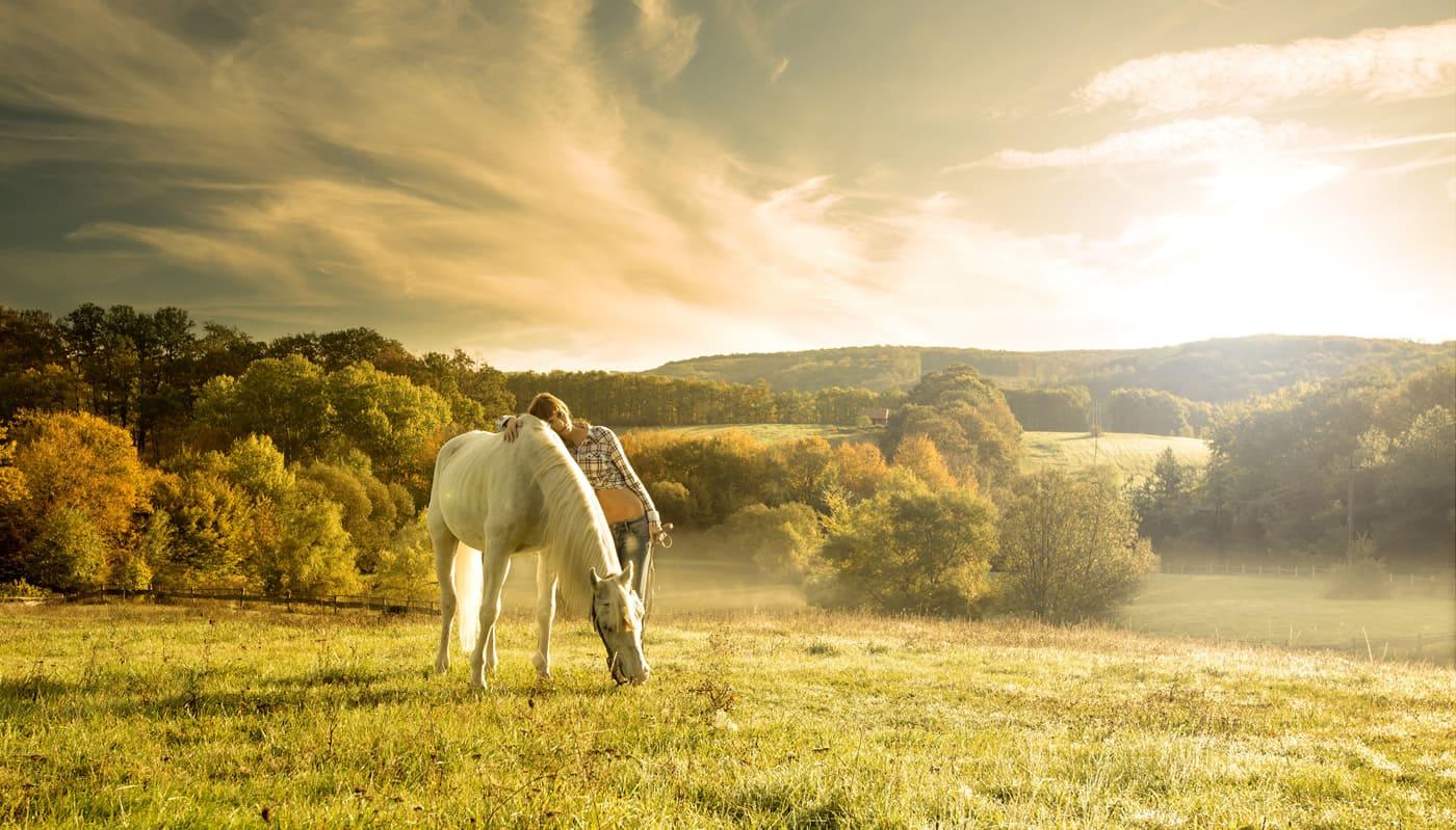 agriturismo-cavalli-toscana
